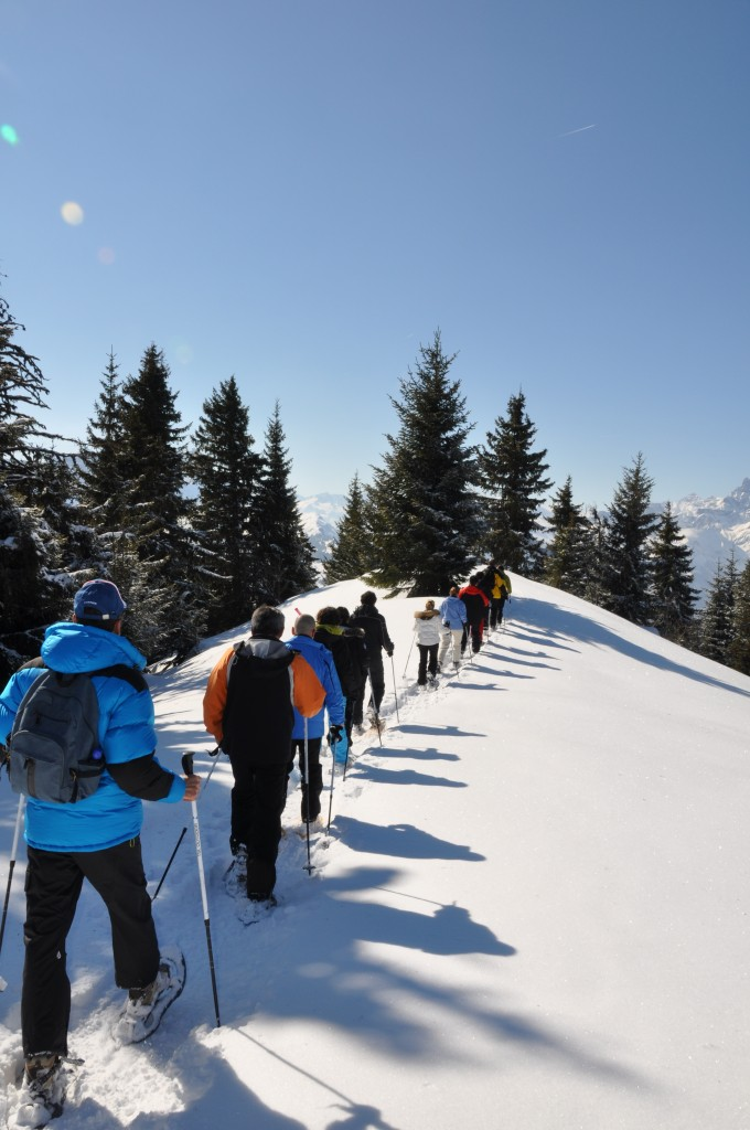 Snow Team Building in the Alps