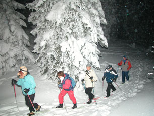 Winter Alps Team Building Events